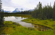 Alberta, Canadian Rockies - Canmore Area  Spray Lakes Trail 05.JPG