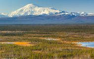 Alaska,Interior - Tok Cutoff Highway 05.JPG