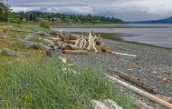 British Columbia, Vancouver Island - Campbell River  Tyee Point 02.JPG
