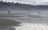 British Columbia, Vancouver Island - Pacific Rim National Park & Preserve  Long Beach 04.JPG