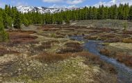 Wyoming, Northwest - Yellowstone National Park 01.JPG