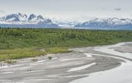 Alaska,Interior - Parks Highway 01.JPG