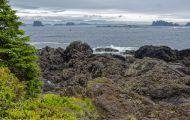 British Columbia, Vancouver Island - Ucluelet  Wild Pacific Trail 05.JPG