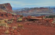 Utah, Canyon Country - Capitol Reef National Park 02.JPG