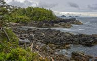 British Columbia, Vancouver Island - Ucluelet  Wild Pacific Trail 04.JPG