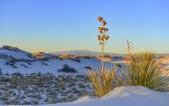 New Mexico, Southeast - White Sands National Monument 06.JPG