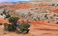 Utah, Canyon Country - Escalante Area 02.JPG