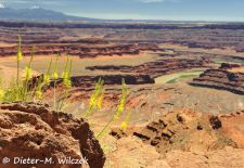 Spectacular Rock Formations in the Western US - Dead Horse Point State Park, Utah.JPG
