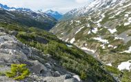 Alaska, Inside Passage - Klondike Highway 02.JPG