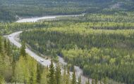 Alaska,Interior - Parks Highway 02.JPG
