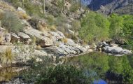 Arizona, Southeast - Tucson   Sabino Canyon 01.JPG