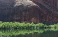Arizona, Northcentral-Eastern - Page  Colorado River Discovery 06.JPG