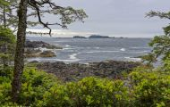 British Columbia, Vancouver Island - Ucluelet  Wild Pacific Trail 03.JPG