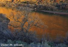 Impressionen vom Colorado River - Abendstimmung am Colorado Riverway, Moab-Utah.JPG