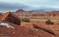Utah, Canyon Country - Capitol Reef National Park 01.JPG