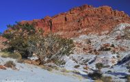 Utah, Canyon Country - Capitol Reef National Park 03.JPG