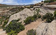 Utah, Canyon Country - Natural Bridges National Monument 11.JPG