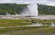 Wyoming, Northwest - Yellowstone National Park Beehive Geyser 01.JPG