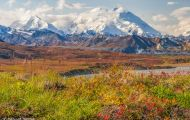 Alaska,Interior - Denali National Park 11.JPG
