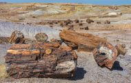 Arizona, Northcentral-Eastern - Petrified Forest National Park 05.JPG