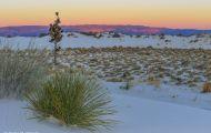 New Mexico, Southeast - White Sands National Monument 08.JPG