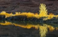 Utah, Canyon Country - Upper Colorado River Scenic Byway  Colorado Riverway 05.JPG