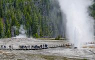 Wyoming, Northwest - Yellowstone National Park Beehive Geyser 02.JPG