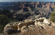 Arizona, Northcentral-Eastern - Grand Canyon National Park 11.JPG