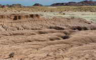 Arizona, Northcentral-Eastern - Petrified Forest National Park 01.JPG