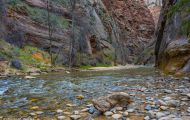 Utah, Dixie - Zion National Park 11.JPG