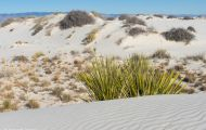 New Mexico, Southeast - White Sands National Monument 03.JPG